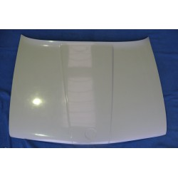 Bonnet E30 polyester
